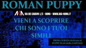 Roman Puppy @ AKA