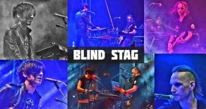 Electro Night w/ Blind Stag live @ AKA